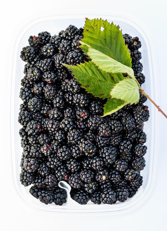 Fresh Wild Blackberries