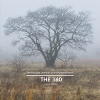 Cover of The 160 by Annie Oliverio