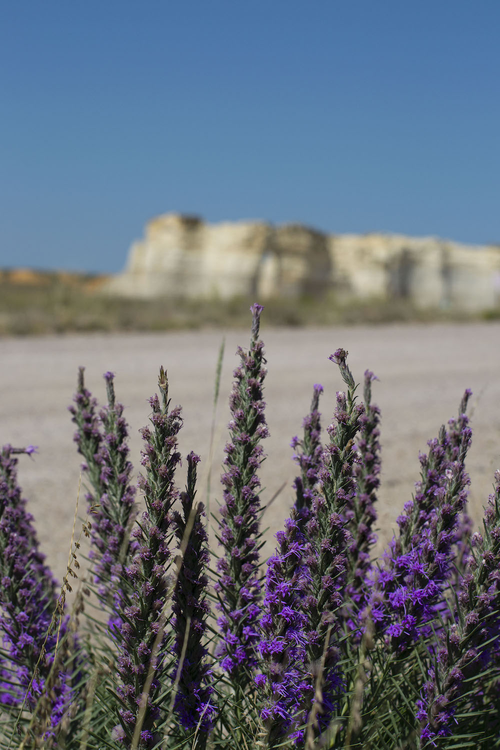 Photo by Annie Flowers, Monument Rocks in Kansas