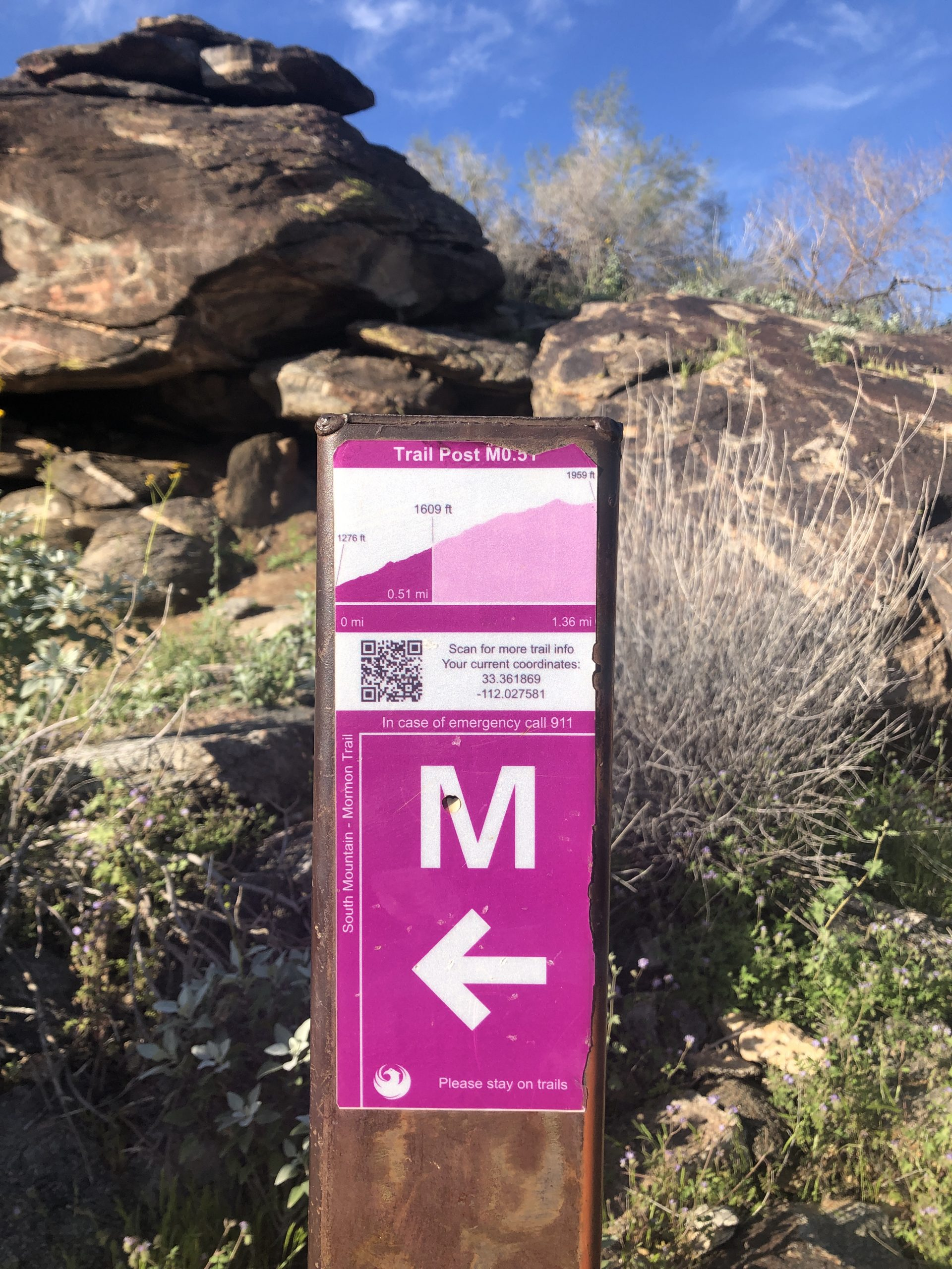 Mormon Loop Trail, March 2020