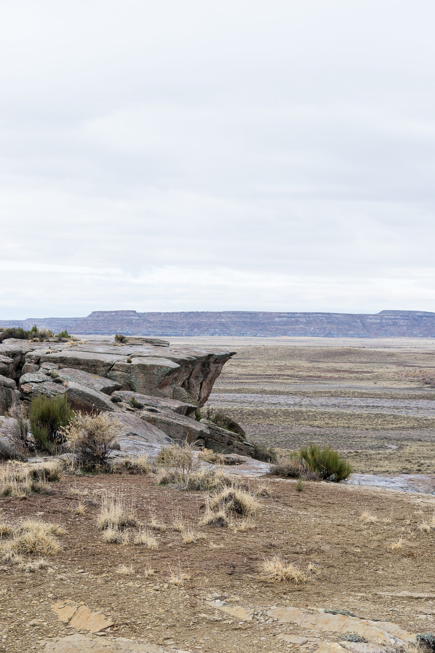 Petrified Forest National Park, March 2020